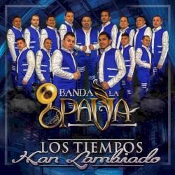 Banda La Pava - Te deseo lo mejor